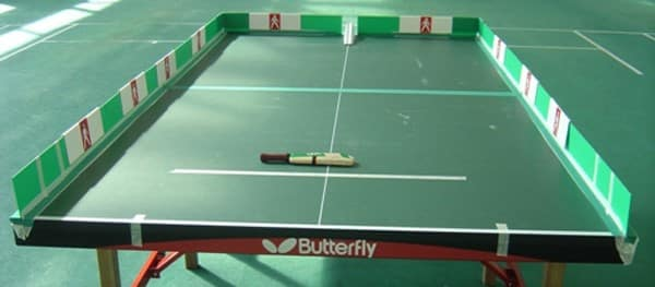 table cricket table